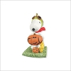 2012 Peanuts Snoopy and Woodstock O' Lanterns *Halloween