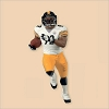 2013 Football Legends Pittsburgh Steelers James Harrison
