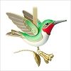 2014 Beauty of Birds 10th Hummingbird