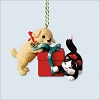 2016 Puppy/Kitten Complement Mischievous and Loving *Club (Sep)