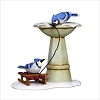 2018 Marjolein's Garden 5th Bathing Blue Jays