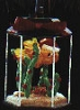 1995 Holiday Swim Fish Bowl *Magic (SDB)