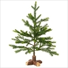2016 Miniature Evergreen Tree *Miniature No Tag